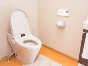 川越市のトイレつまりの事例